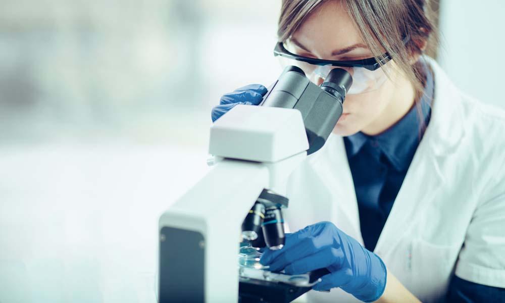 arginine testosterone research