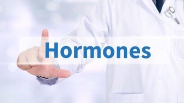 HGH Therapy vs Testosterone Therapy