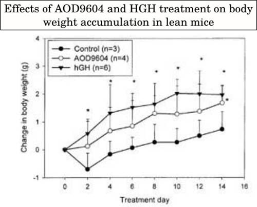 Effects of AOD9604 and HGH in lean mice