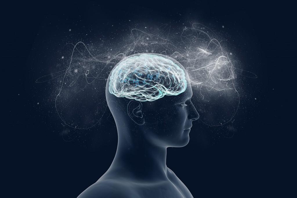 Effects of testosterone on brain